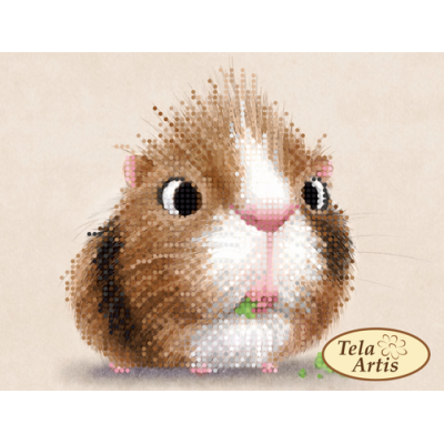 Bead Art Kit - Guinea Pig